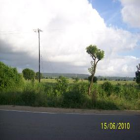 0.25 acres plots in Vipingo