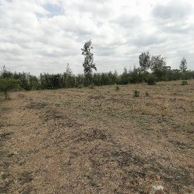 20 acres land in Juja South