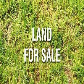 0.8 Acres in Kilimani Turbo Rd